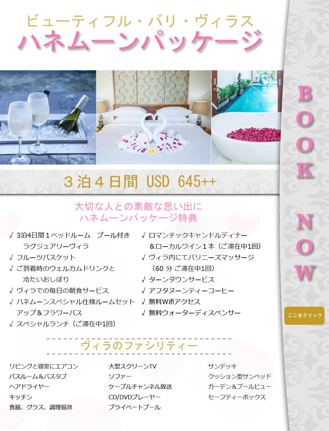 honeymoon Packages BBV Web Japanese Final 2
