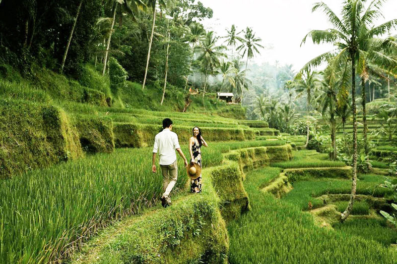 Beginner's Guide to Travel in Bali